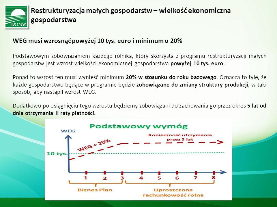 Restrukturyzacja małych gospodarstw – wielkość ekonomiczna gospodarstwa