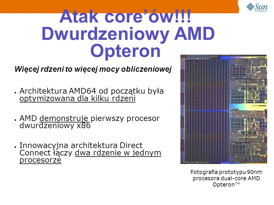 Atak core'ów!!! Dwurdzeniowy AMD Opteron