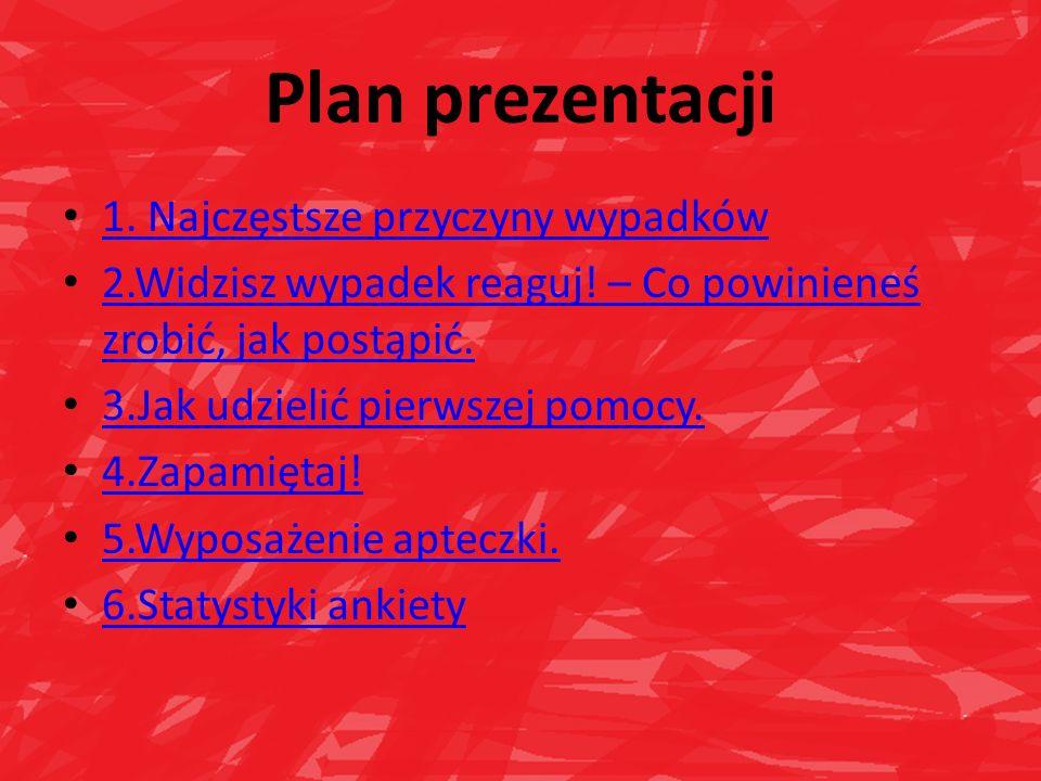 Plan prezentacji 1. Najczęstsze przyczyny wypadków