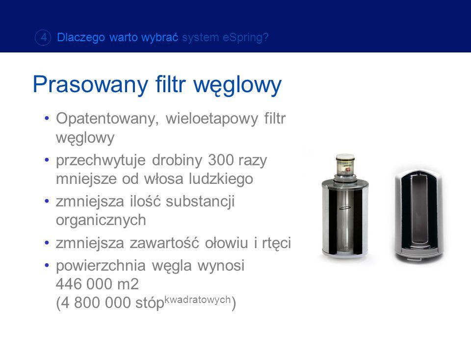 Prasowany filtr węglowy