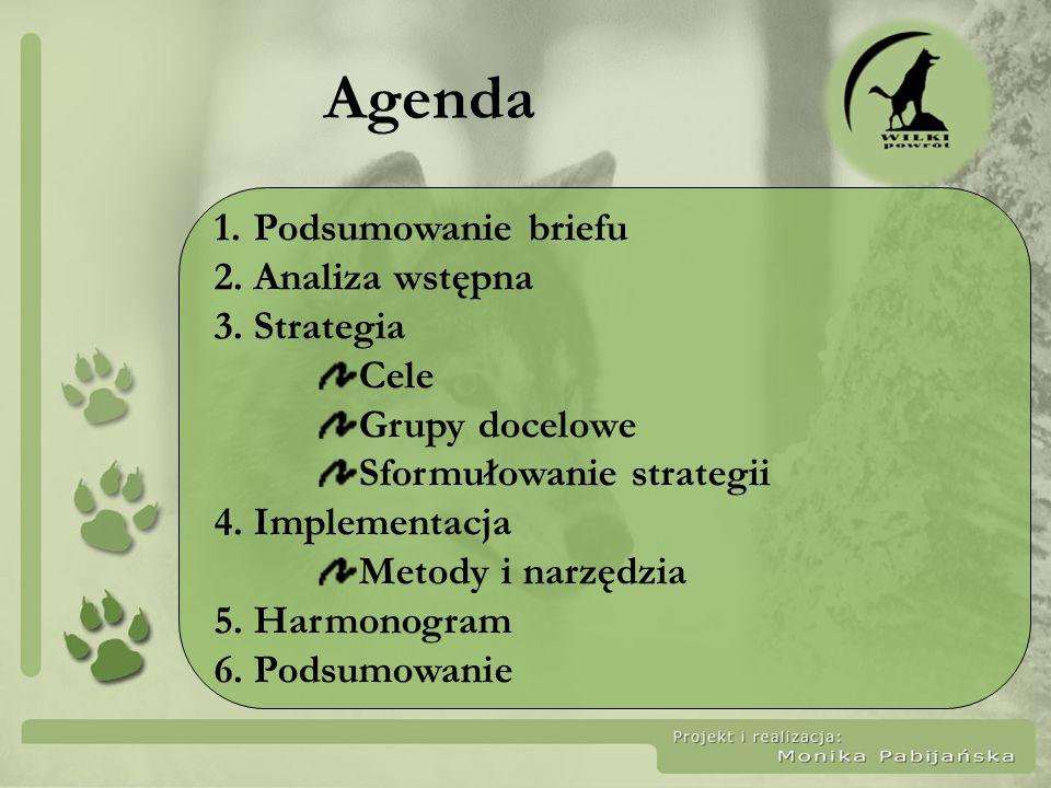 Agenda Podsumowanie briefu Analiza wstępna Strategia Cele
