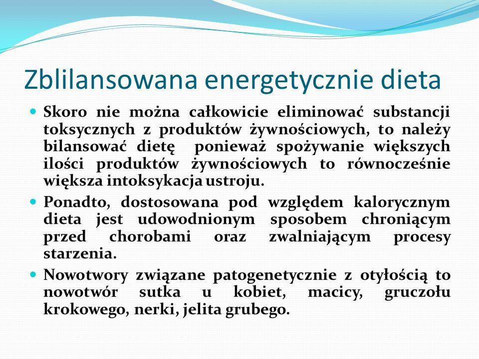 Zblilansowana energetycznie dieta