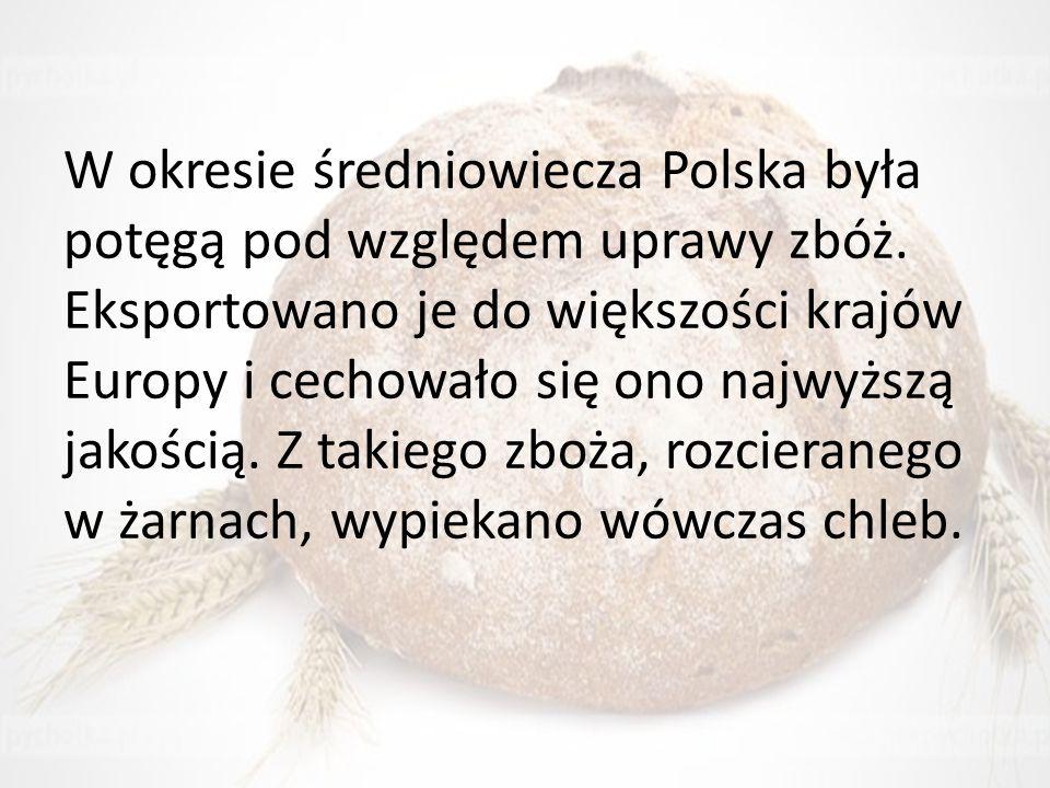 W okresie średniowiecza Polska była potęgą pod względem uprawy zbóż