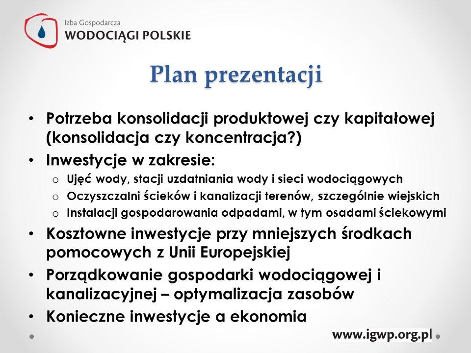 Plan prezentacji Potrzeba konsolidacji produktowej czy kapitałowej (konsolidacja czy koncentracja )