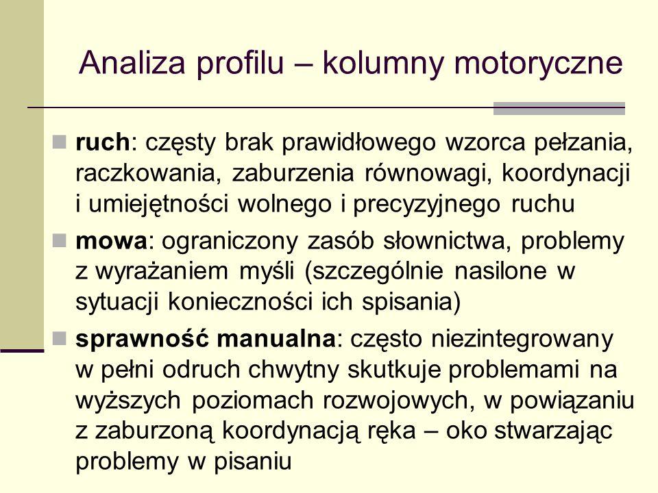 Analiza profilu – kolumny motoryczne