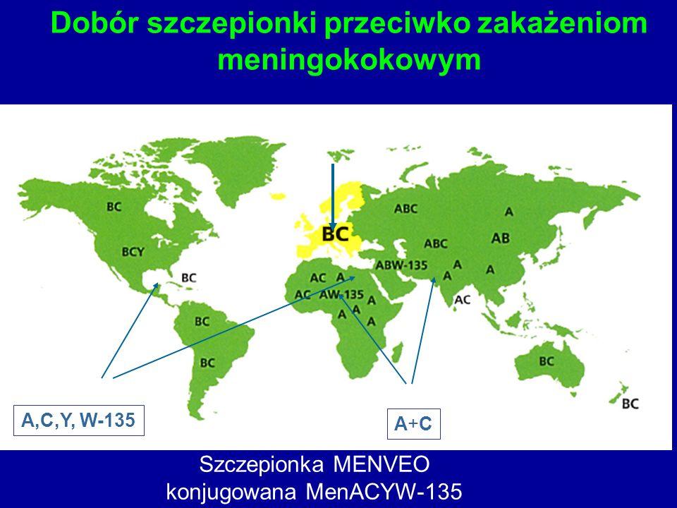 Dobór szczepionki przeciwko zakażeniom meningokokowym