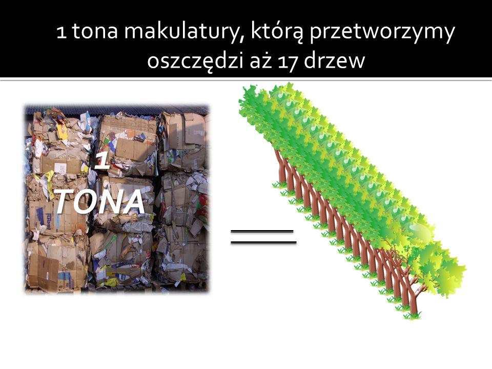 1 tona makulatury, którą przetworzymy oszczędzi aż 17 drzew