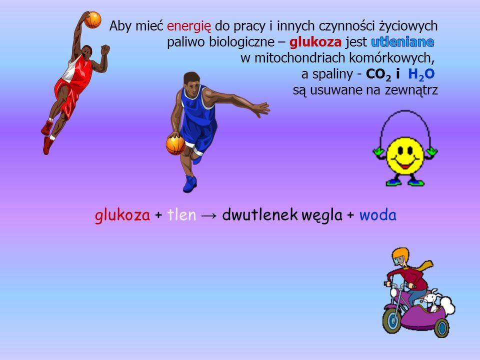 glukoza + tlen → dwutlenek węgla + woda