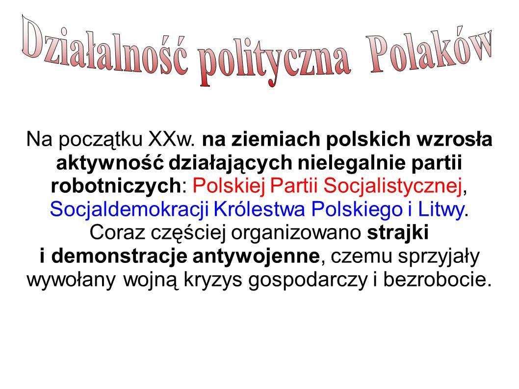 Działalność polityczna Polaków