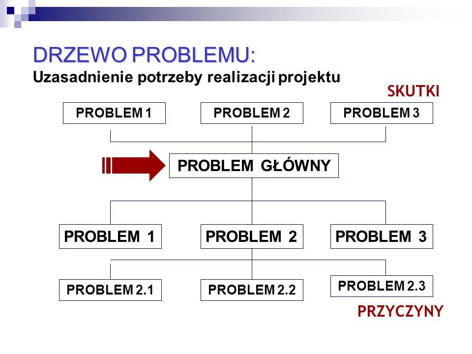 DRZEWO PROBLEMU: Uzasadnienie potrzeby realizacji projektu