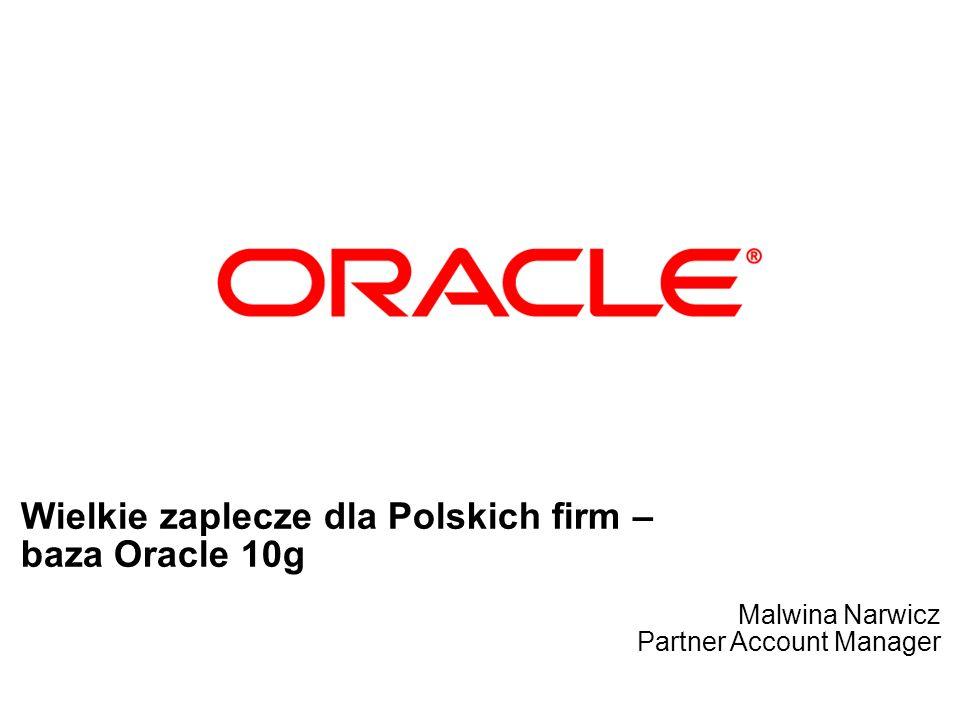 Wielkie zaplecze dla Polskich firm – baza Oracle 10g