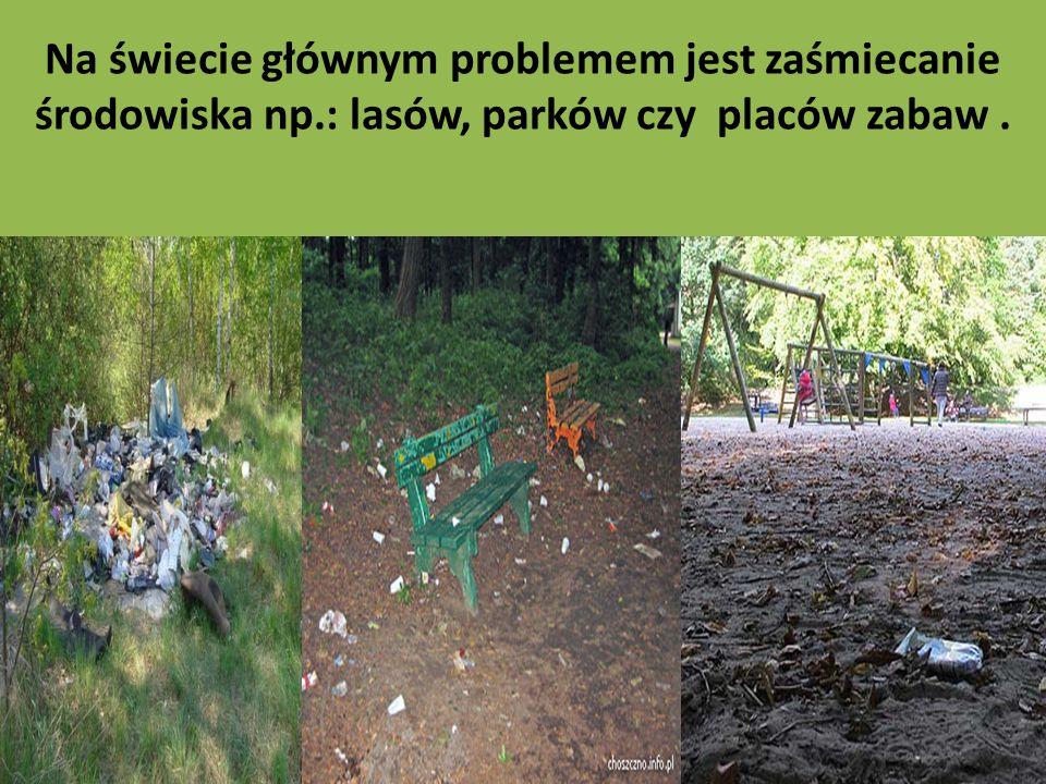 Na świecie głównym problemem jest zaśmiecanie środowiska np