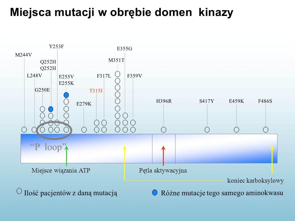 Miejsca mutacji w obrębie domen kinazy