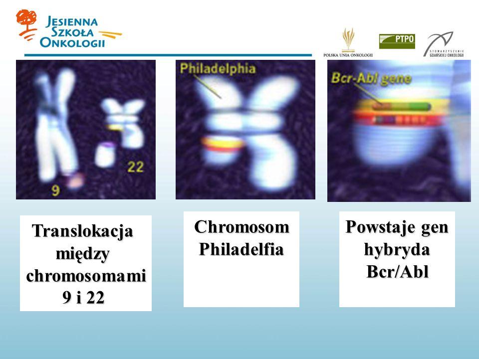 Chromosom Philadelfia Powstaje gen hybryda Bcr/Abl Translokacja między chromosomami 9 i 22