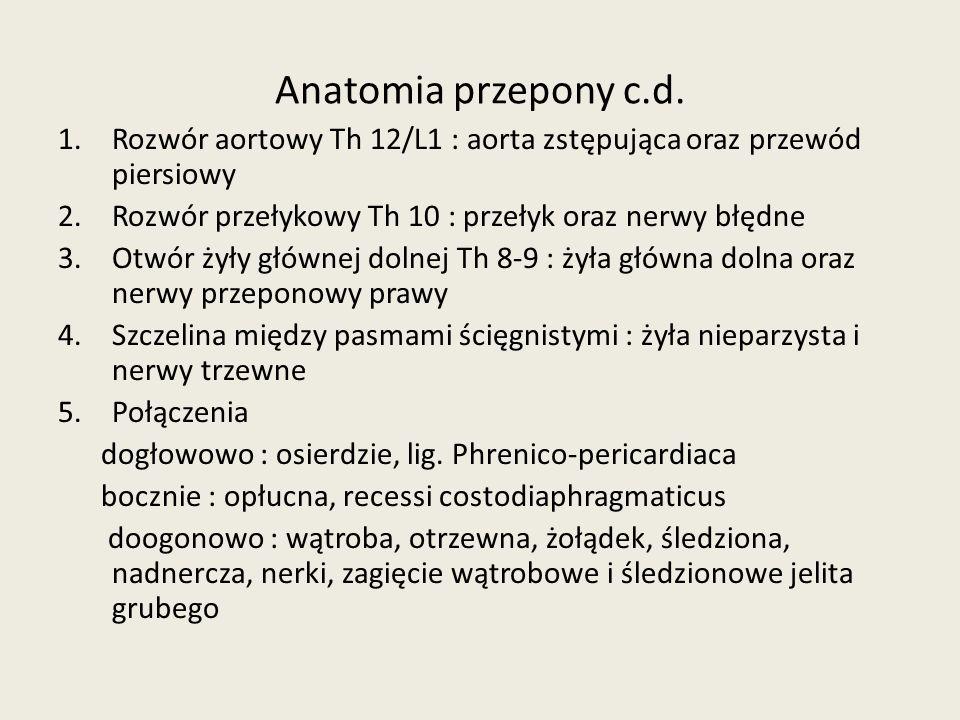 Anatomia przepony c.d. Rozwór aortowy Th 12/L1 : aorta zstępująca oraz przewód piersiowy. Rozwór przełykowy Th 10 : przełyk oraz nerwy błędne.