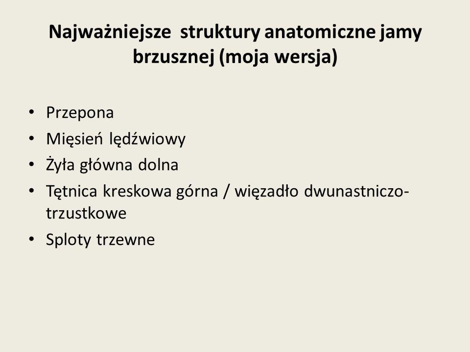 Najważniejsze struktury anatomiczne jamy brzusznej (moja wersja)