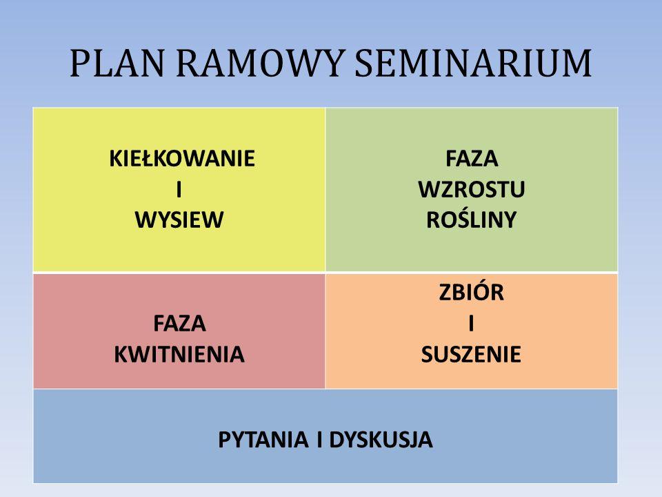 PLAN RAMOWY SEMINARIUM
