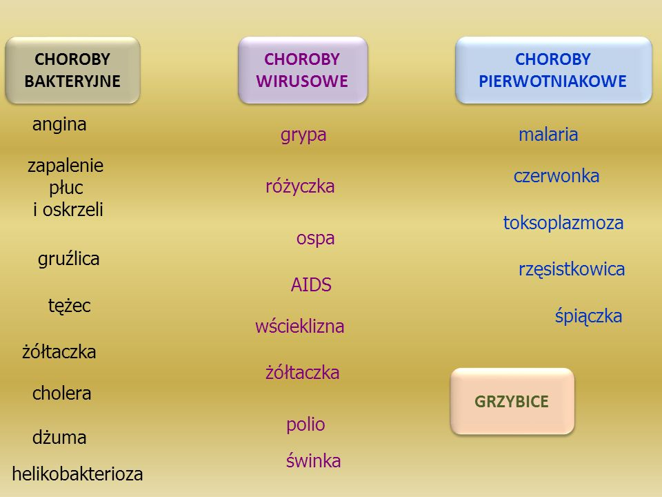 CHOROBY BAKTERYJNE. CHOROBY. WIRUSOWE. CHOROBY. PIERWOTNIAKOWE. angina. grypa. malaria. zapalenie.