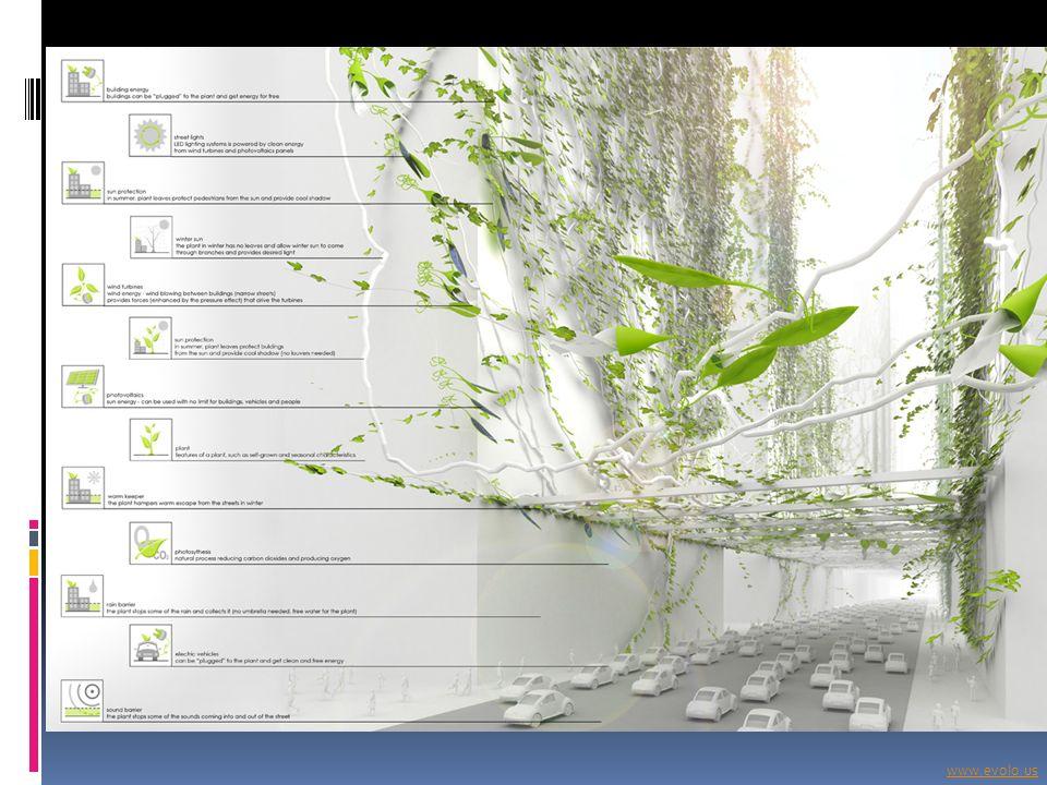 www.evolo.us