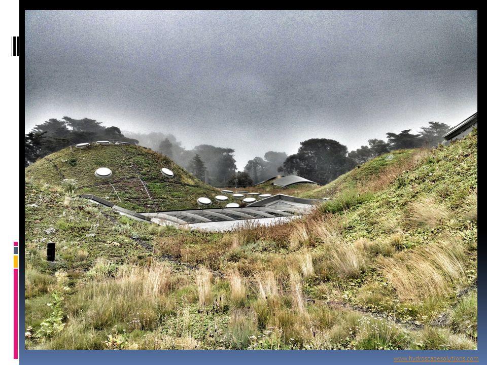 www.hydroscapesolutions.com