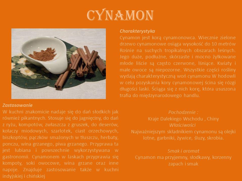 Cynamon Charakterystyka