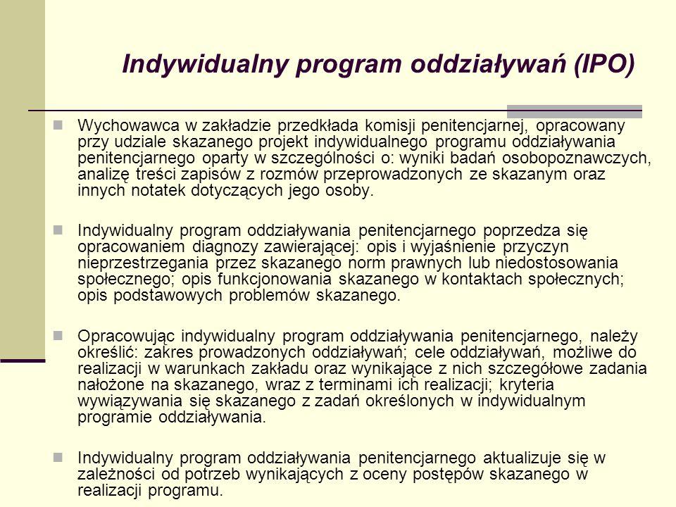 Indywidualny program oddziaływań (IPO)