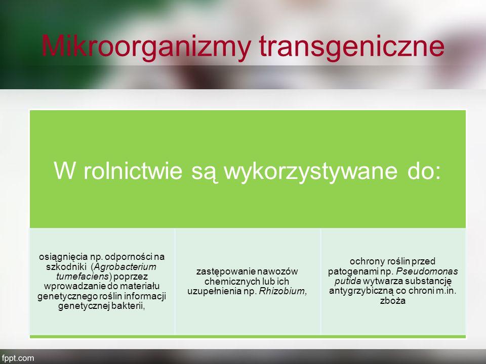 Mikroorganizmy transgeniczne
