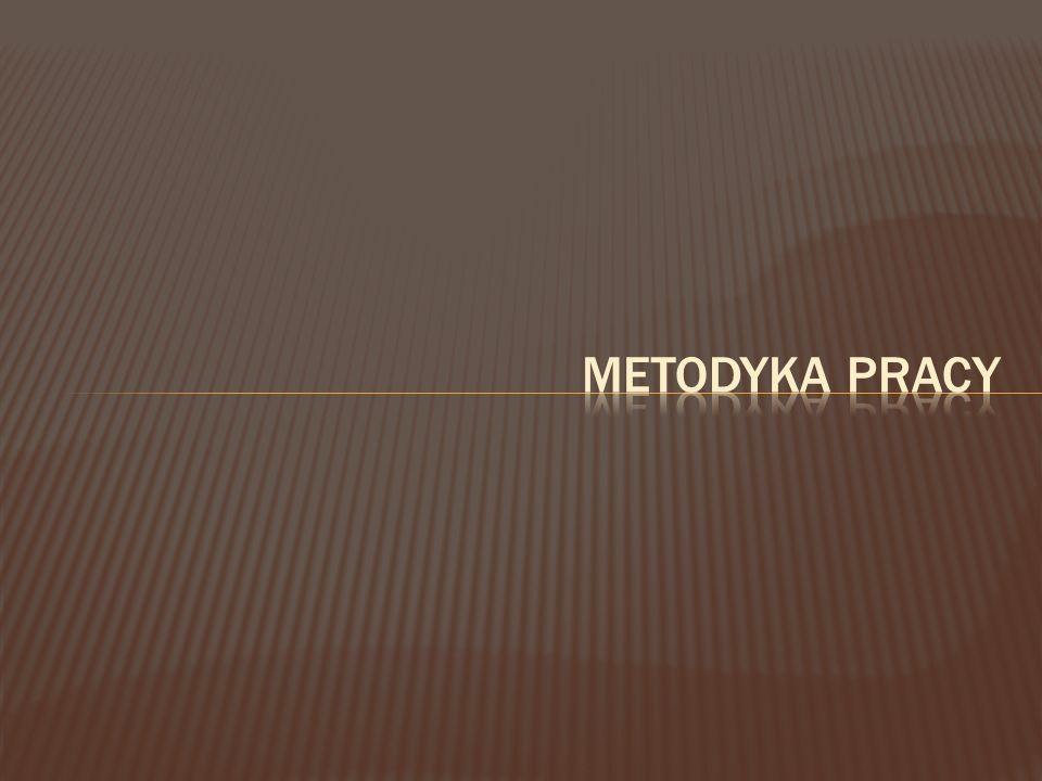 METODYKA PRACY