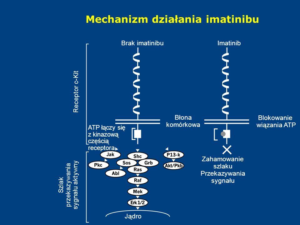 Mechanizm działania imatinibu