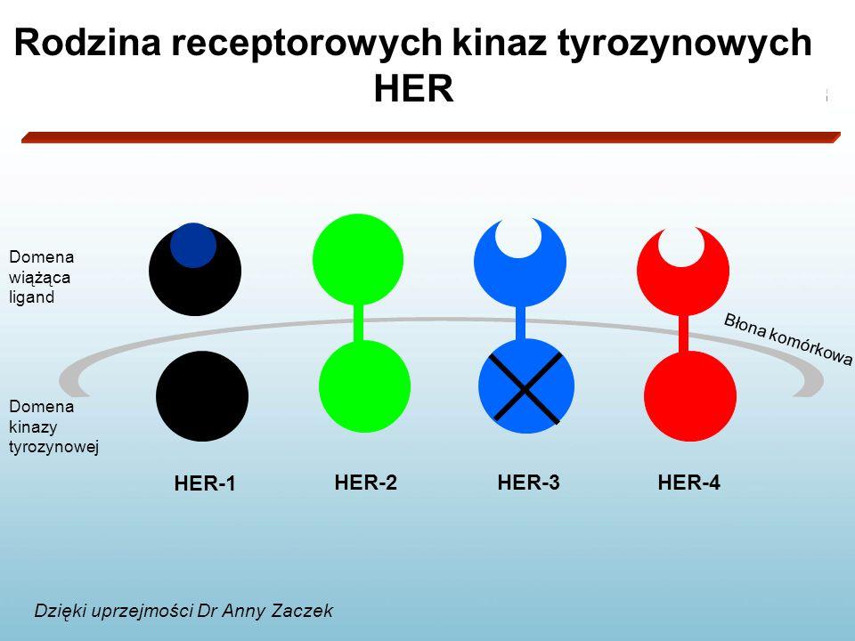 Rodzina receptorowych kinaz tyrozynowych HER
