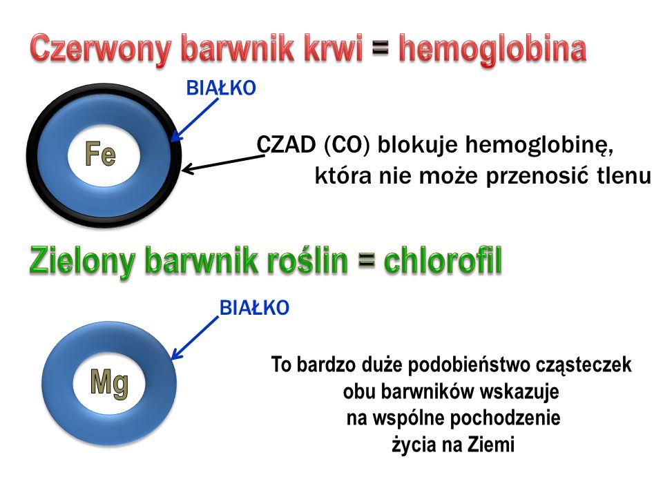 Czerwony barwnik krwi = hemoglobina Zielony barwnik roślin = chlorofil
