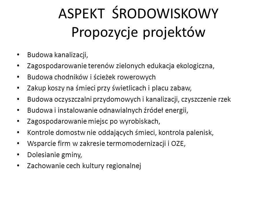 ASPEKT ŚRODOWISKOWY Propozycje projektów