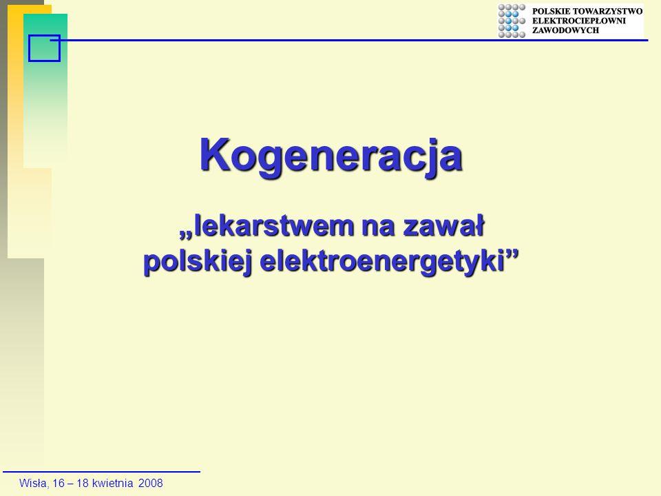 """Kogeneracja """"lekarstwem na zawał polskiej elektroenergetyki"""