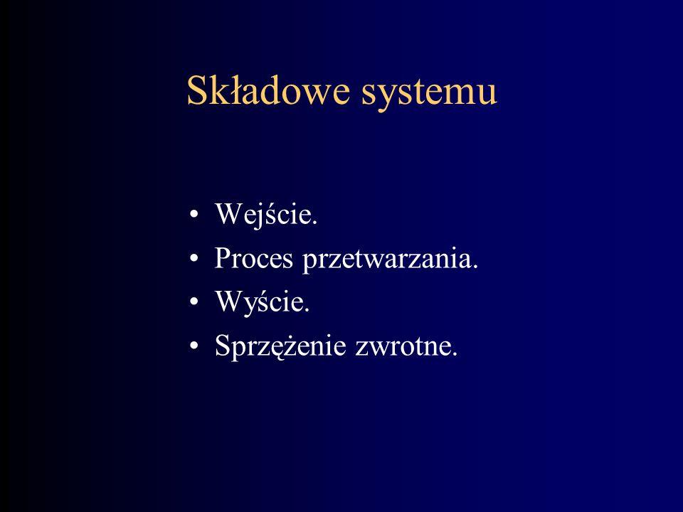 Składowe systemu Wejście. Proces przetwarzania. Wyście.