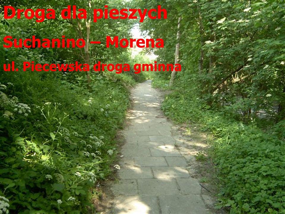 Droga dla pieszych Suchanino – Morena ul. Piecewska droga gminna