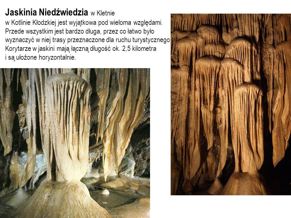 Jaskinia Niedźwiedzia w Kletnie