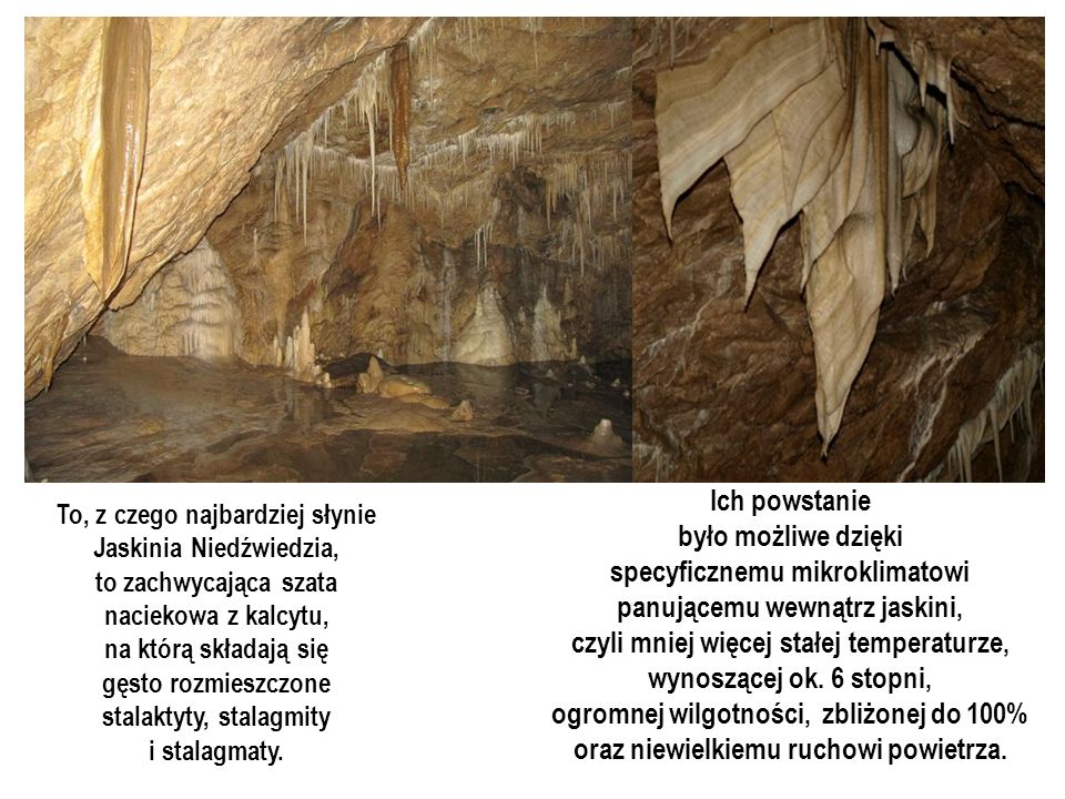 specyficznemu mikroklimatowi panującemu wewnątrz jaskini,