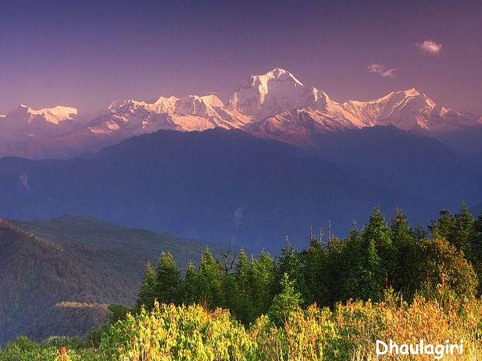 Dhaulagiri