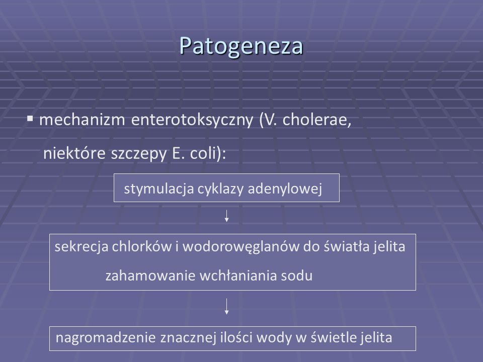 Patogeneza mechanizm enterotoksyczny (V. cholerae,