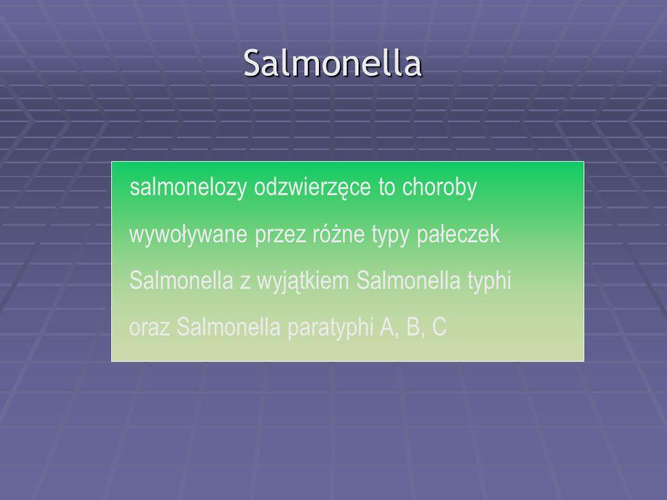 Salmonella salmonelozy odzwierzęce to choroby