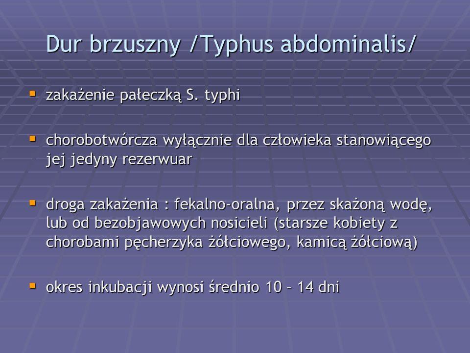 Dur brzuszny /Typhus abdominalis/
