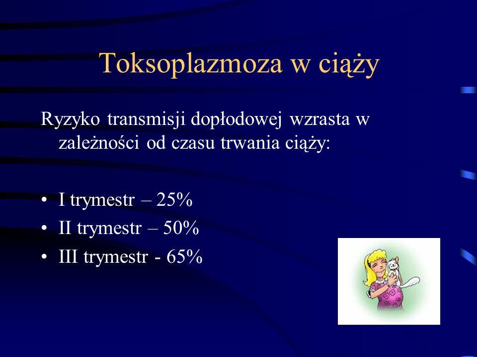 Toksoplazmoza w ciąży Ryzyko transmisji dopłodowej wzrasta w zależności od czasu trwania ciąży: I trymestr – 25%