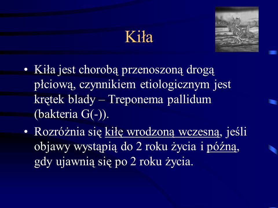 Kiła Kiła jest chorobą przenoszoną drogą płciową, czynnikiem etiologicznym jest krętek blady – Treponema pallidum (bakteria G(-)).