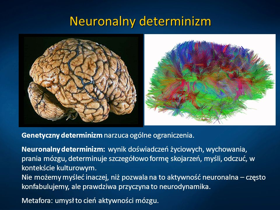 Neuronalny determinizm