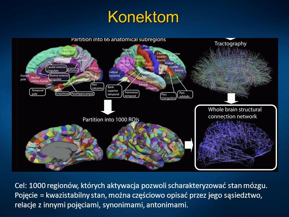 Konektom Cel: 1000 regionów, których aktywacja pozwoli scharakteryzować stan mózgu.