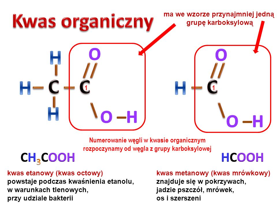 I // \ // \ Kwas organiczny H – C – C – C H H H O O O –H O –H CH3COOH