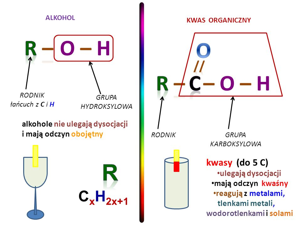 R – O – H O R – C – O – H R CxH2x+1 // kwasy (do 5 C)