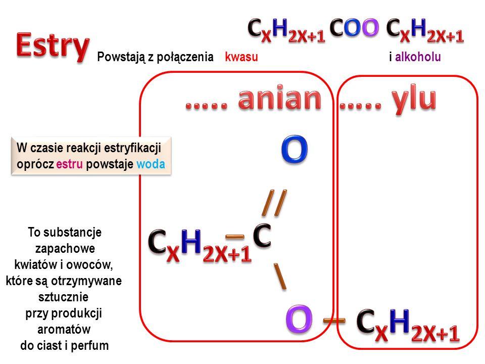 O // \ O – Estry ….. anian ….. ylu – C CXH2X+1 CXH2X+1