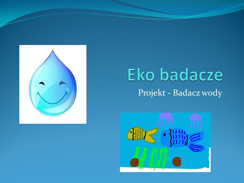 Eko badacze Projekt - Badacz wody