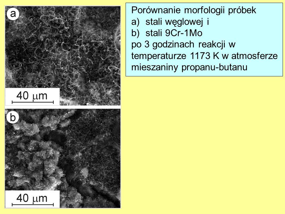 Porównanie morfologii próbek